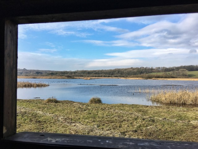 View from Lower Hide Leighton Moss RSPB reserve birdwatching