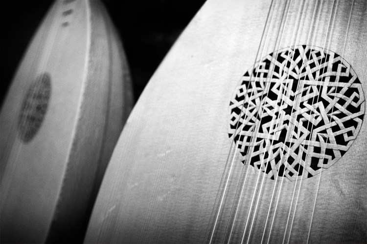 Two Lutes, musical instruments, monochrome, Black & White
