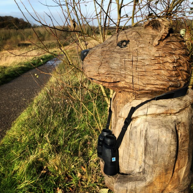 Wind in the Willows: Ratty Brockholes