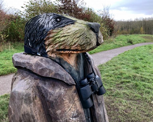 Wind in the Willows Mr Badger Brockholes
