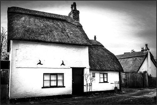HOUSES: Thatched Cottage , monochrome