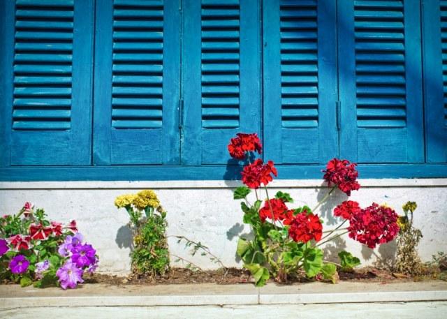 Windows, shutters,