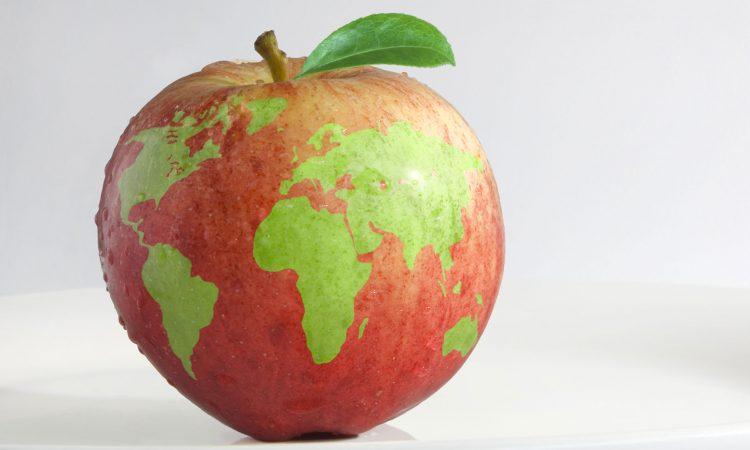 Végétaliser ses menus en renfort à sa santé et à la planète!