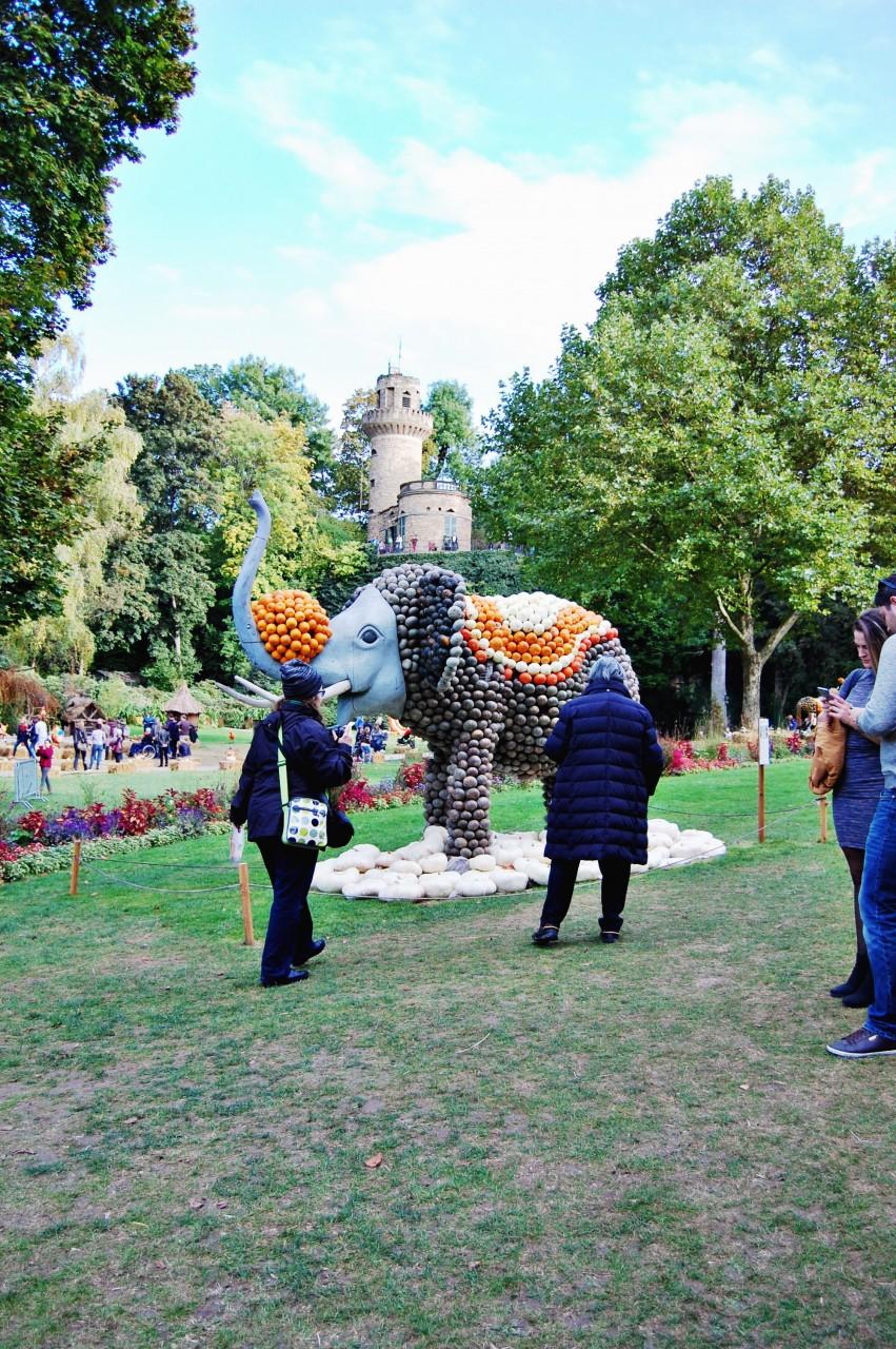 pumpkin_elephant