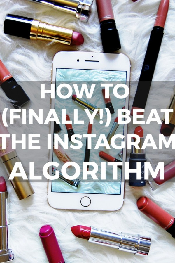 Conquer Instagram's Algorithm (STARTS TODAY!)