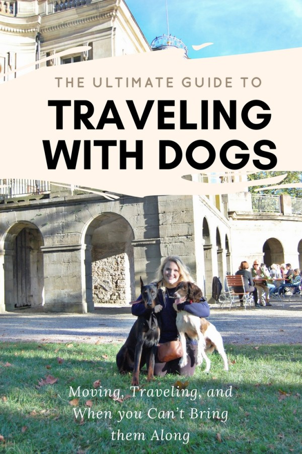 The Ultimate Guide to Traveling with Dogs
