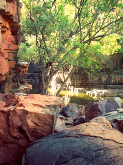 On the way to Darwin, we stopped at my now favourite place in Australia - The Grotto. 22km from Karratha, it's a little out of the way, but if you ask me, worth every second it took travelling there. It was like something out of a shampoo advertisement - a little tropical, a little lush and certifiably organic!