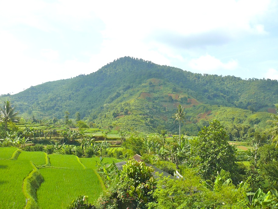 """One of the beautiful views we saw and enjoyed in Puncak"""
