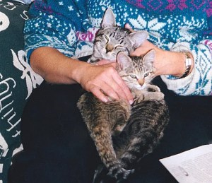 Pepper and Honey were inseparable – even here, on the very first day in our home in 1999.
