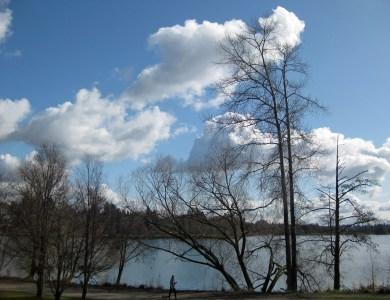 Green Lake: winter cradles spring.