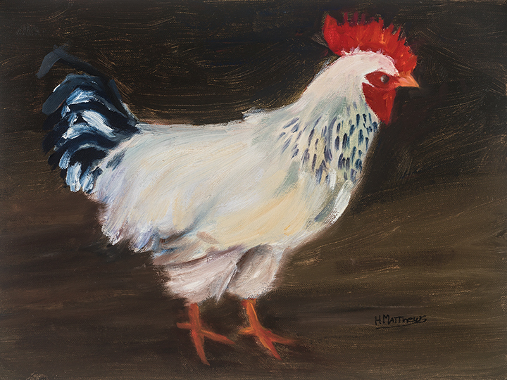 Rooster, 9X12, oil on canvas, Painter Helen Matthews