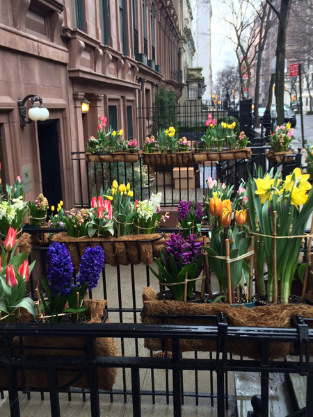 Wondrous Spring Blooms @ NYC Salon – 2015