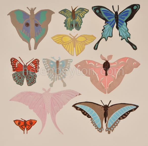 Butterflies – A3 Signed Poster