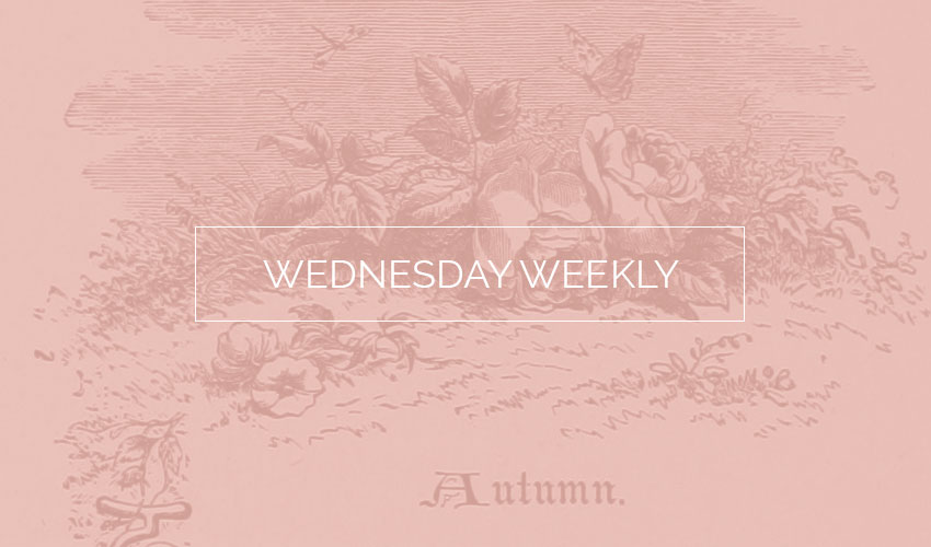 Wednesday Weekly #6