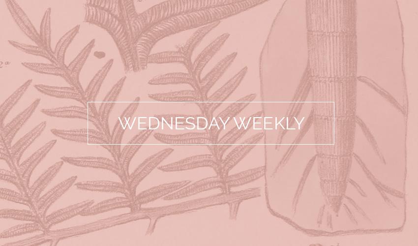 Wednesday Weekly #22