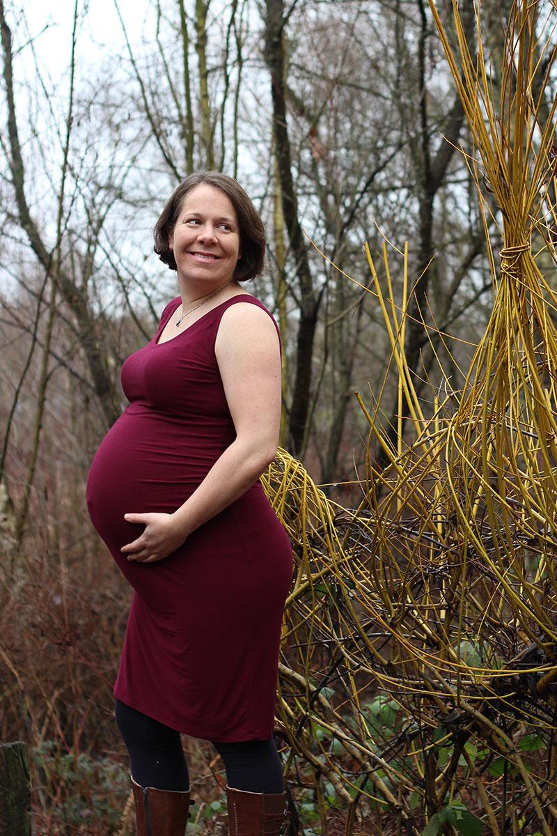 Givre Maternity Dress