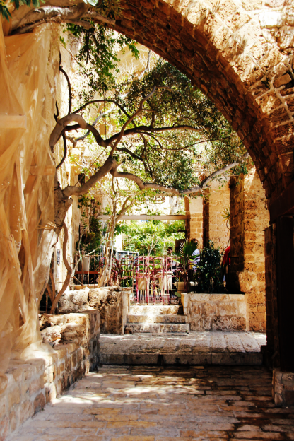 tel-aviv-jaffa-backyard