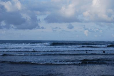 Surfers at the north shore
