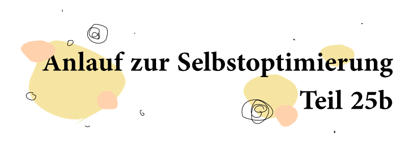 Anlauf zur Selbstoptimierung – Teil 25b