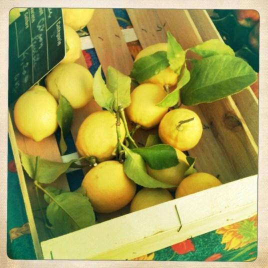 Sitroner.