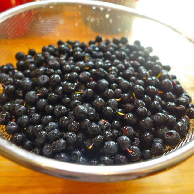 Norske blåbær