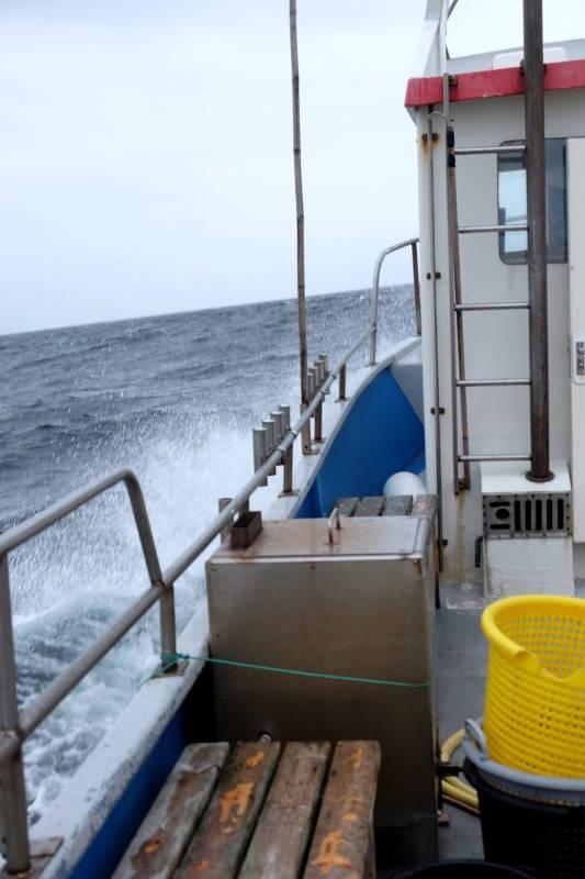 Det er sjø. Skikkelig sjø i følge oss landkrabber. Et lite vindpust ifølge fiskerne.
