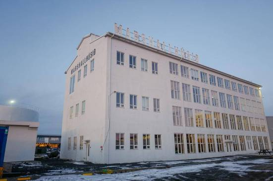 Island_reykjavik_dill_nostra_Maturogdrykkur_helleskitchenL1360729