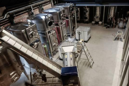 Utstyret står klart til å gjære 10 tonn druer. Foto: Helle Øder Valebrokk