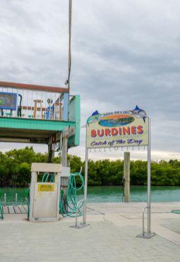 HelleValebrokk_Florida Keys_Florida_USA_Marathon_Key West_L1790532