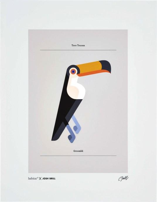 Affiche Toucan Josh Brill pour Habitat