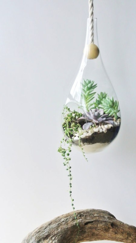 terrarium tendance urban jungle - www.hello-hello.fr / Hëllø Blogzine