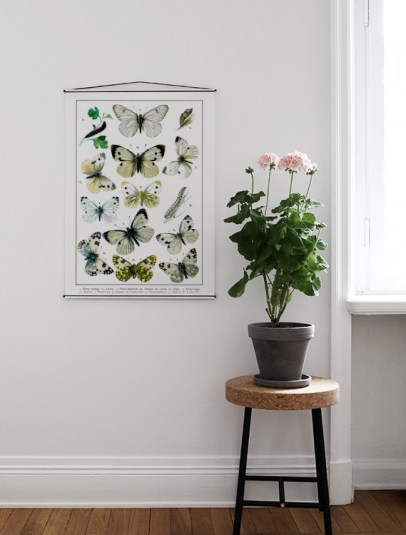 Planches pédagogique papillons style Deyrolle // Hëllø Blogzine blog deco & lifestyle www.hello-hello.fr