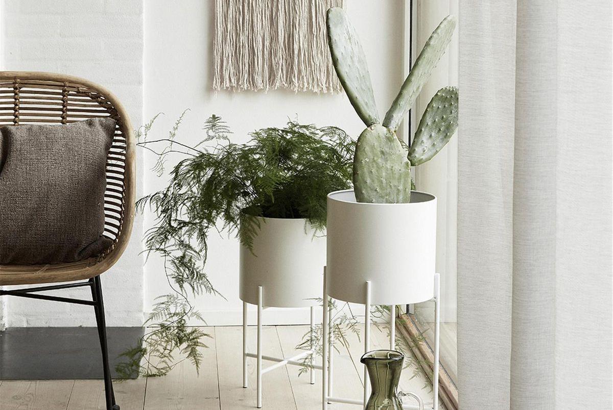 Etagere Pour Plantes Interieures tendance déco : où trouver un joli piédestal pour plantes ?