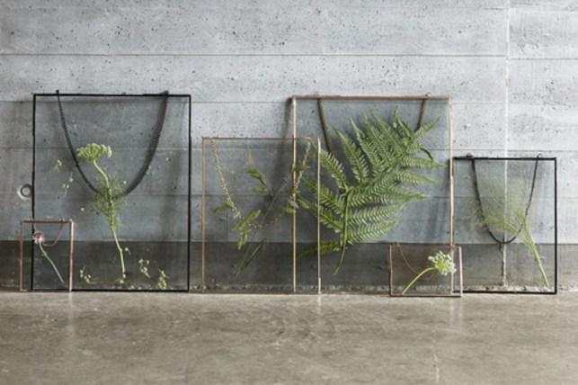 Cadre en verre façon herbier // Hellø Blogzine blog deco & lifestyle www.hello-hello.fr
