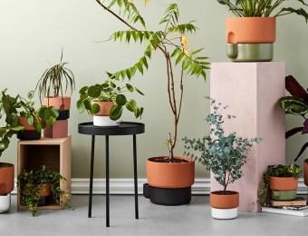 20 solutions déco et intelligentes pour arroser vos plantes // Hellø Blogzine blog deco & lifestyle www.hello-hello.fr