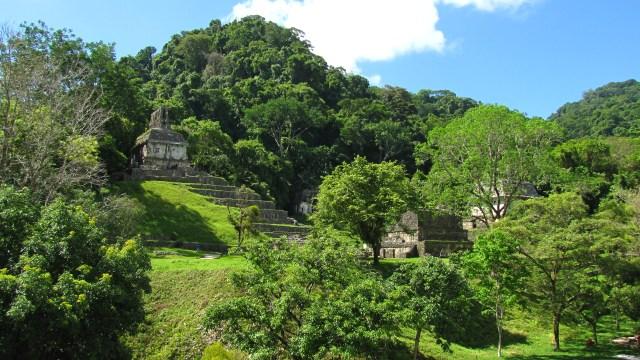 2014.06.21 - Palenque 35.2