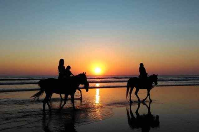 Paardrijden Ameland