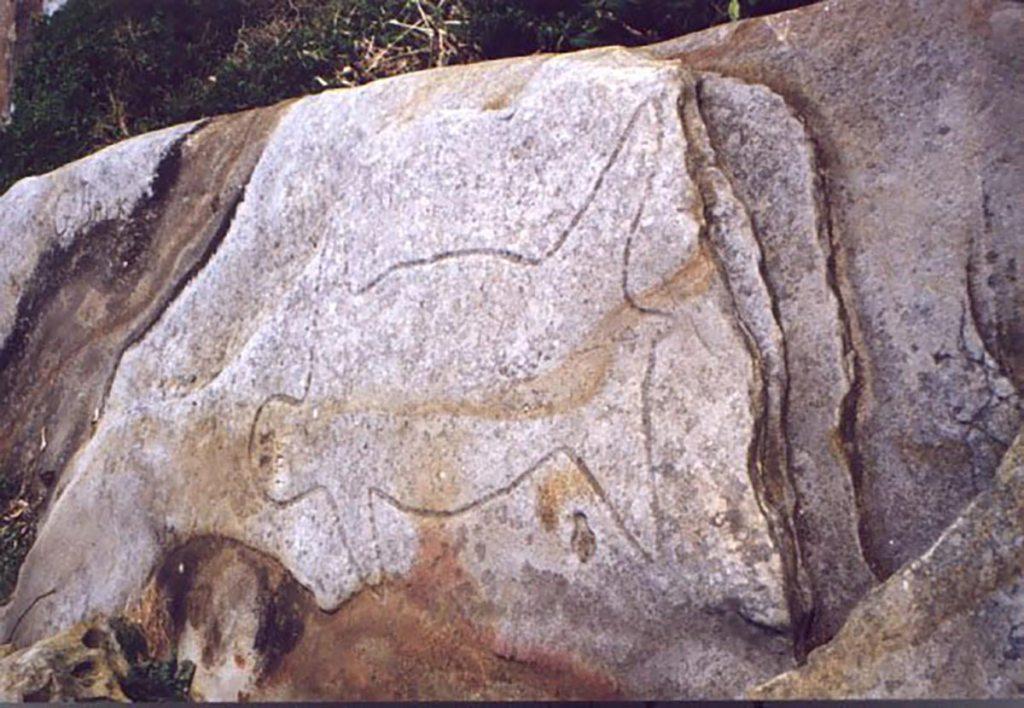 Aboriginal Rock Carvings Reflect Early Coastal Life