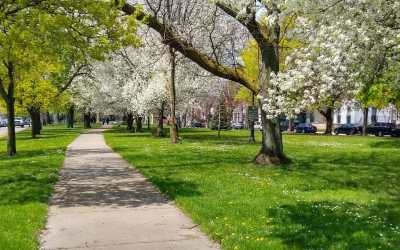 Buffalo's Residential Parks, Part 3 of 3: Johnson Park