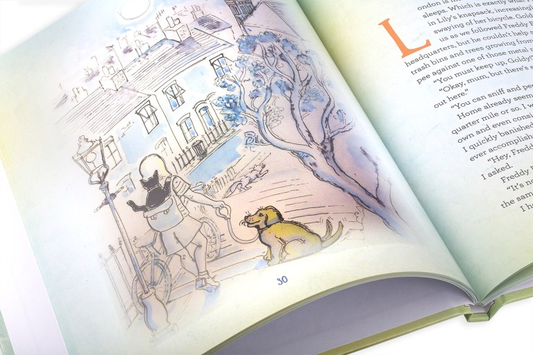 Hello, My Name is Bunny! London, an illustrated chapter book for children age 6+ and cat-lovers of every age