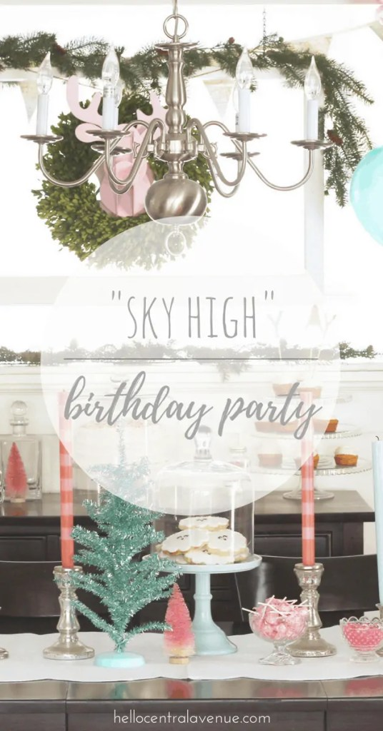 """Sky High"" First Birthday Party"