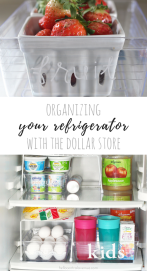 Organizing the Refrigerator with the Dollar Store