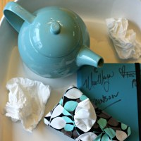 5 Minute Kleenex Holder Sewing Project Perfect for Stocking Stuffers & Fall Colds
