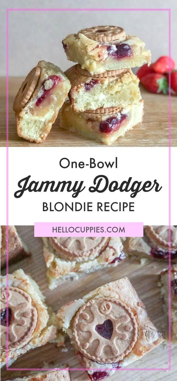 One Bowl Blondie Recipe