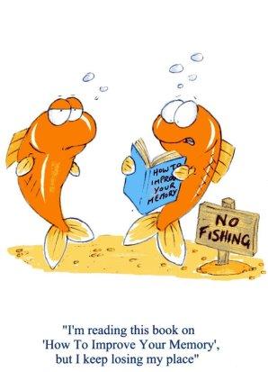 goldfish_memory__colour_by_lemmingwrangler-d3k70u8