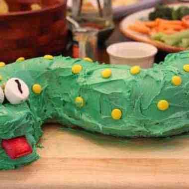 DIY Homebaked Snake Cake