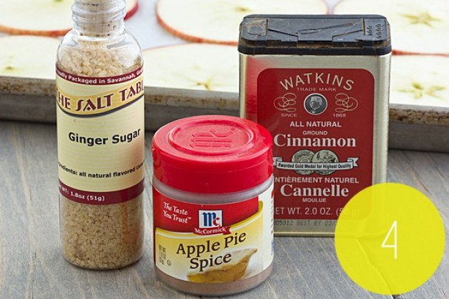 Apple Chips Seasonings