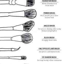 9 Makeup Brushes Every Girl Needs