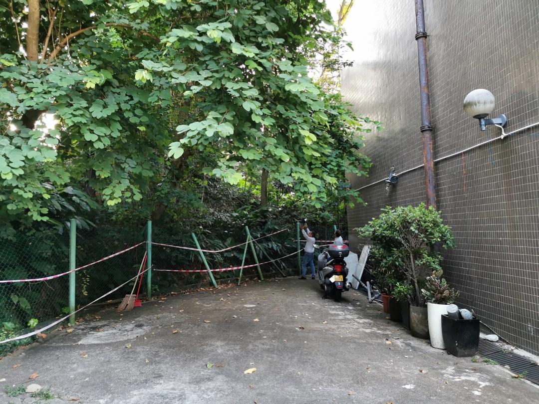 Clubhouse Backyard Renovation Project