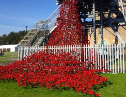 A Day Out in Northumberland – Woodhorn Weeping Window and Amble Cakes